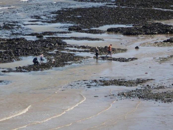 Playing in the rock pools on Kingsdown beach